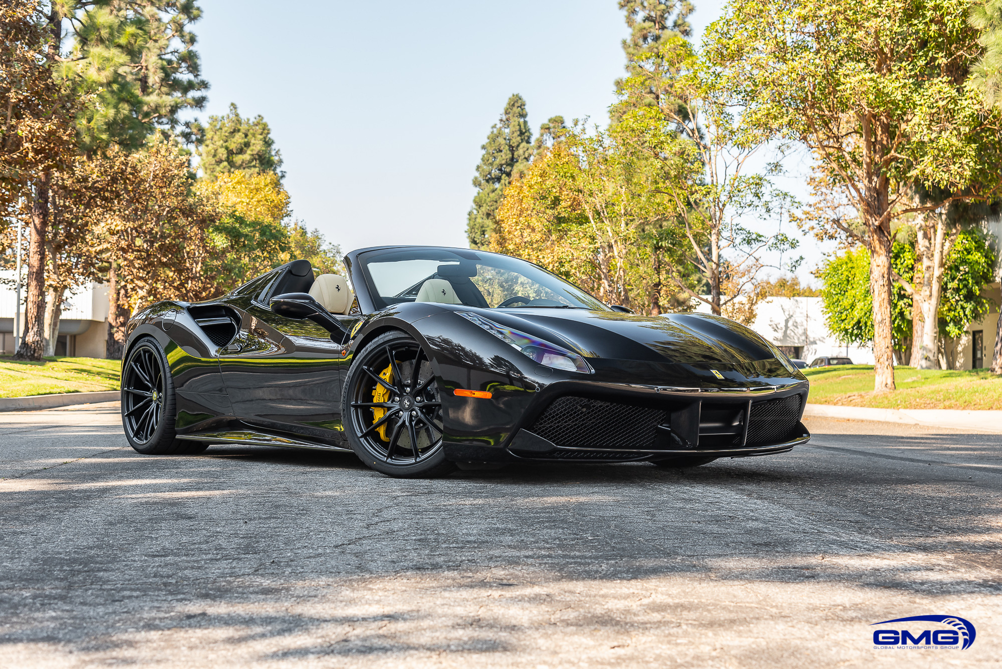 Nero Daytona Ferrari 488 Spider